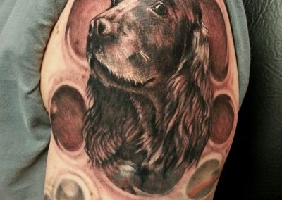 Springer dog Tattoo by Billy Muren
